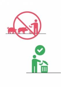 Mesures de biosécurité : peste porcine africaine