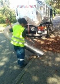 Ramassage des feuilles : mode d'emploi