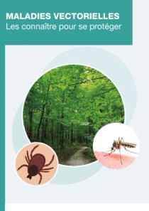 Tiques et moustiques : les tactiques de prévention